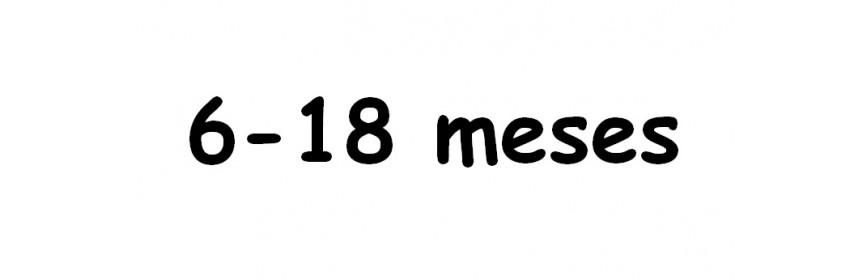 6-18 MESES